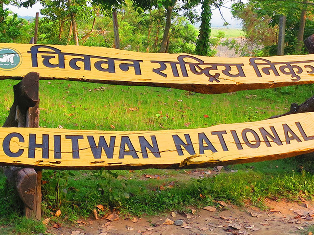 Chitwan National Park Tour package from Lumbini