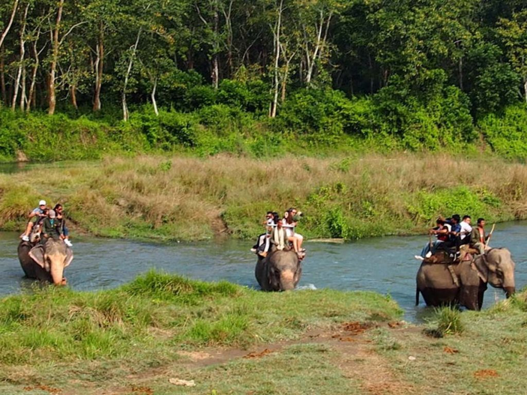 Chitwan National Park Tour package from Pokhara
